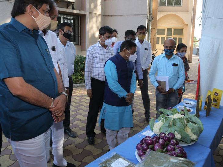 નવો કૃષિ કાયદો ખેડૂતોની ભાગ્યરેખા બદલવાનું દુરંદેશી પગલું, મહેસૂલમંત્રી|બારડોલી,Bardoli - Divya Bhaskar