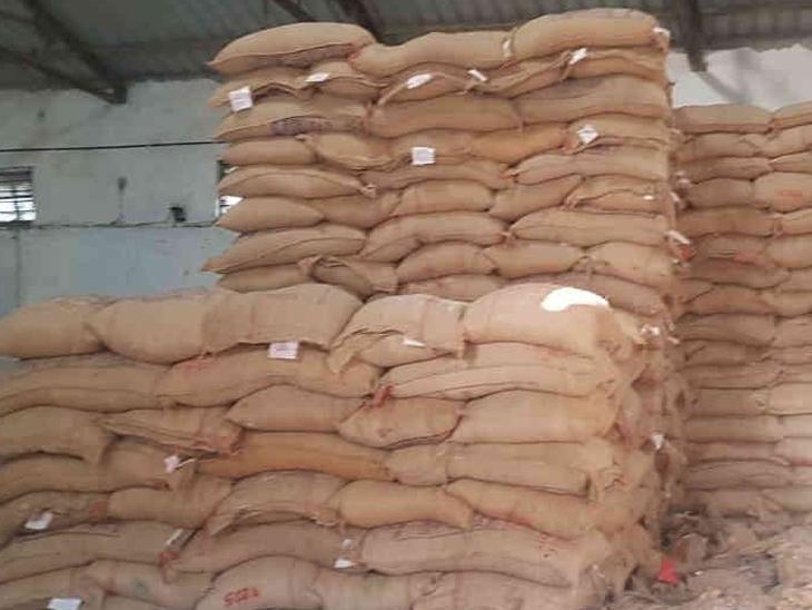 રેશનિંગના 2500 કિલો ઘઉં બારોબાર વેચાય તે પૂર્વે ક્રાઇમ બ્રાંચે પકડી પાડ્યા|રાજકોટ,Rajkot - Divya Bhaskar
