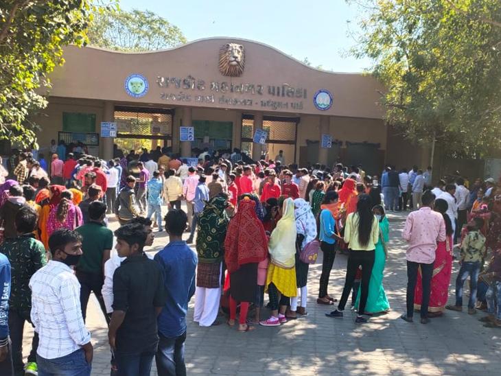 પ્રદ્યુમન પાર્ક ઝૂ બર્ડ ફ્લૂના એલર્ટ વચ્ચે બંધ હોવાથી મુલાકાતીઓ પરત ફર્યા|રાજકોટ,Rajkot - Divya Bhaskar