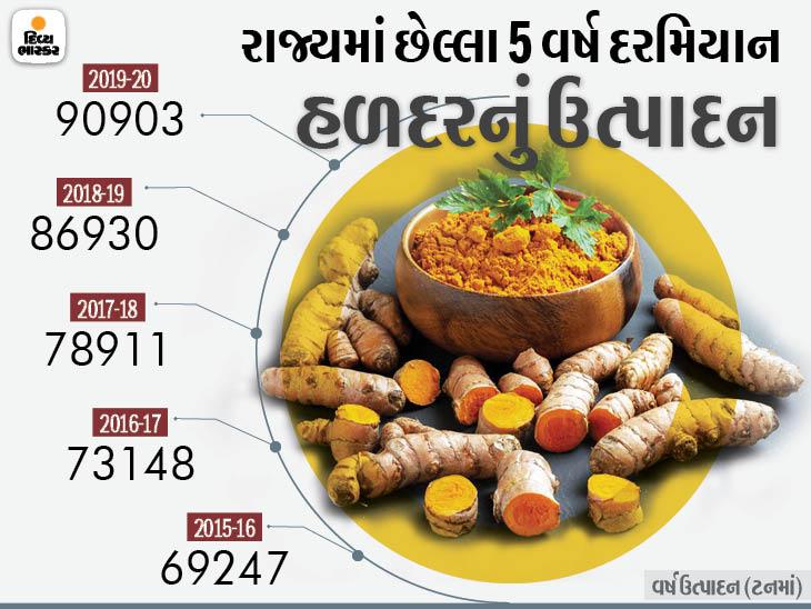 કોરોના કાળમાં ઉપયોગી સિદ્ધ થયેલી હળદરનું ઉત્પાદન ગુજરાતમાં હવે 20% વધશે, વિદેશમાં 40% માગ વધી ઓરિજિનલ,DvB Original - Divya Bhaskar