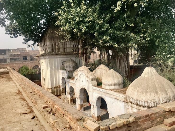 ભાગલા પછી પાકિસ્તાનમાં કોઇ મંદિર નથી બન્યું, જૂનાં મંદિરો પર માફિયાઓએ કબજો જમાવી લીધો વર્લ્ડ,International - Divya Bhaskar