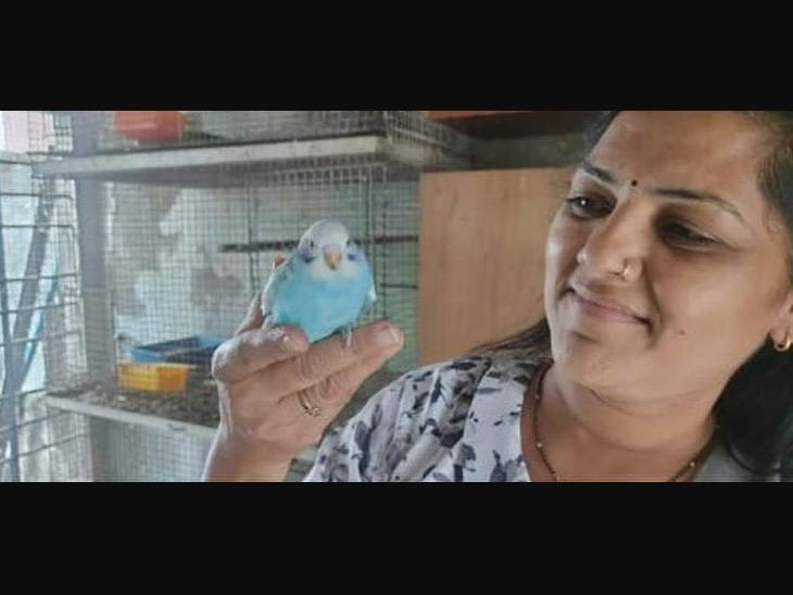 ભાવનગરના મેયરપદે કીર્તિબેન દાણીધારીયાની વરણી. તેઓ પશુ-પક્ષી પ્રેમી છે.