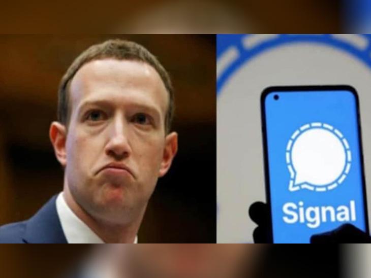 ફેસબુકના માલિક ઝુકરબર્ગનો પણ ડેટા લીક થયો, એમાં મળેલા નંબર પરથી સિગ્નલ એપ યૂઝ કરાઈ હોવાનો ઘટસ્ફોટ|વર્લ્ડ,International - Divya Bhaskar