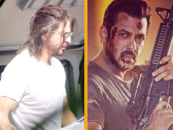 શાહરૂખની 'પઠાન' અને સલમાનની 'ટાઈગર 3'ને નુકસાન નહીં થાય, અક્ષયની 'રક્ષાબંધન'નું શૂટિંગ શરુ થયા પહેલાં જ અટકી પડ્યું|બોલિવૂડ,Bollywood - Divya Bhaskar