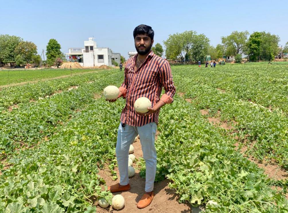 ડીસાના જોરાપુરા ગામના ખેડૂતે શક્કરટેટીનું વાવેતર કરી સફળતા મેળવી, 60થી 70 દિવસમાં ટેટીની આવક શરૂ થઇ જાય છે પાલનપુર,Palanpur - Divya Bhaskar