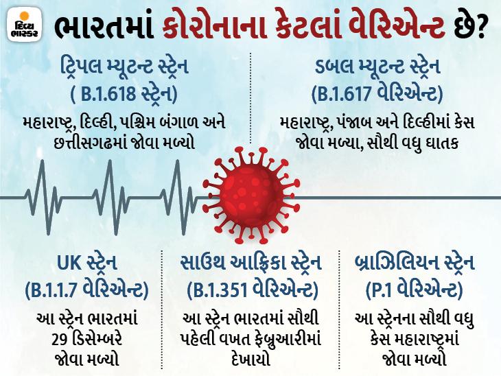 ભારતમાં ટ્રિપલ મ્યૂટન્ટ કોરોના વાયરસના સેમ્પલ મળ્યા, મહારાષ્ટ્ર અને બંગાળમાં સૌથી વધુ અસર|ઈન્ડિયા,National - Divya Bhaskar