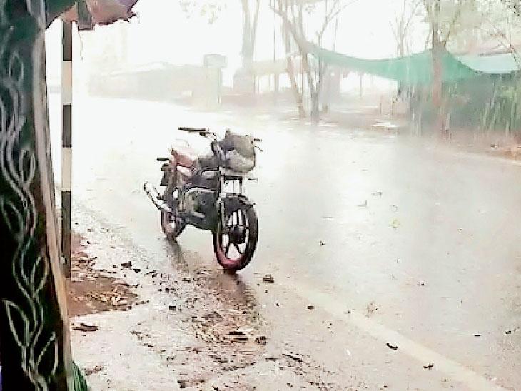સુરતના છુટાછવાયા વિસ્તારમાં પરોઢિયે ઝરમર વરસાદ, તાપી-સોનગઢમાં માવઠું|સુરત,Surat - Divya Bhaskar