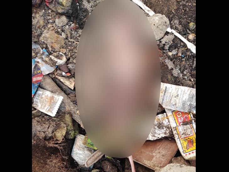 રે કળયુગ, ગટર ચેમ્બરમાં નવજાત શિશુ તરછોડાયું, ગટરની સફાઇ કરતી સમયે મળી આવ્યું|ગાંધીધામ,Gandhidham - Divya Bhaskar