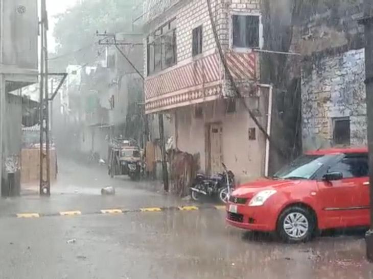 સાસણ-તાલાલા ગીર અને વંથલી પંથકમાં ભરઉનાળે વરસ્યો કમોસમી વરસાદ, કેસર કેરીના પાકને વ્યાપક નુકસાન|જુનાગઢ,Junagadh - Divya Bhaskar