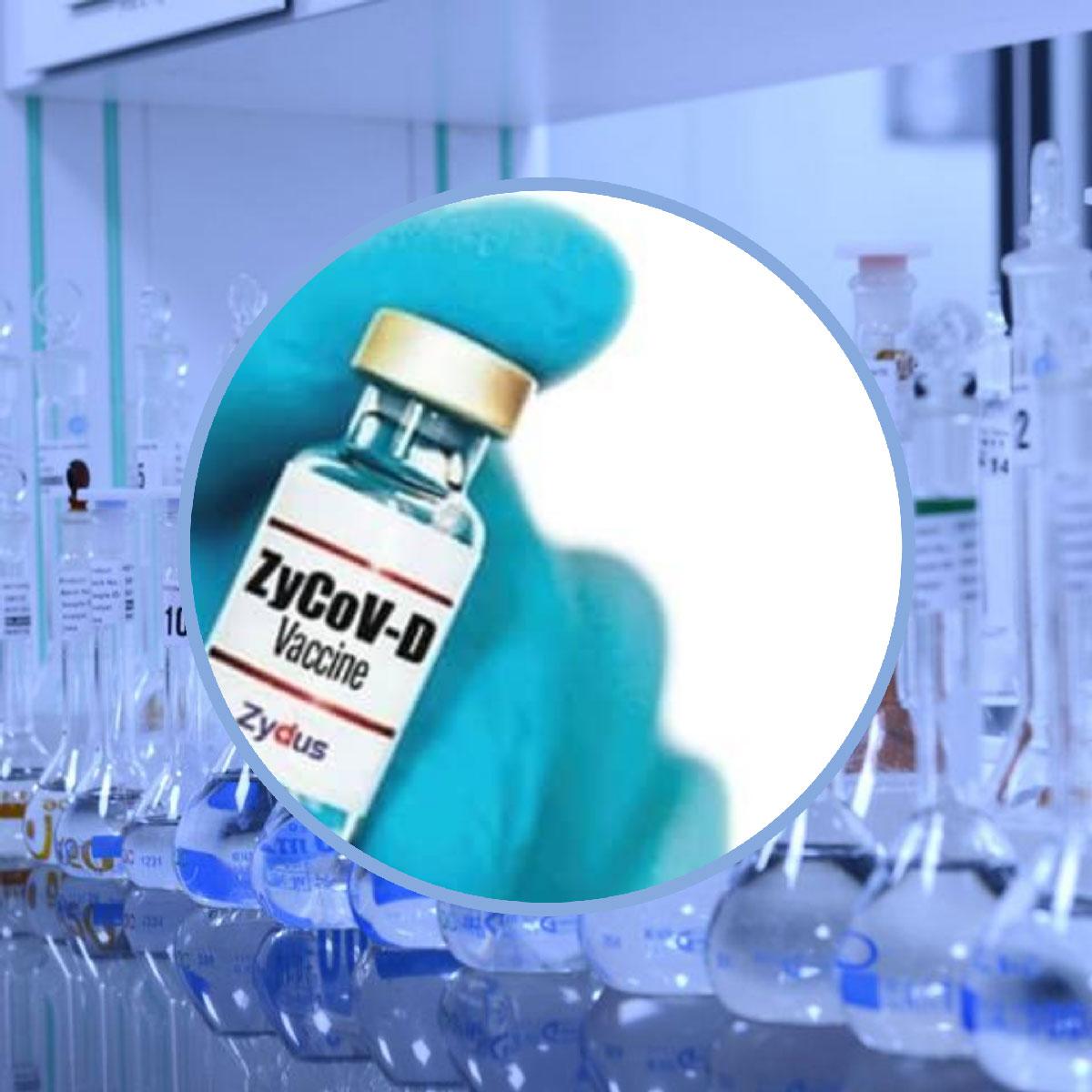 ટૂંક સમયમાં જ મળી શકે છે ચોથી વેક્સિન-'ZyCoV-D'; ઈમરજન્સી ઉપયોગ માટેની મંજૂરી માંગશે ઝાયડસ કેડિલા|ઈન્ડિયા,National - Divya Bhaskar
