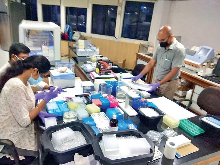 લેબમાં કામ કરતા વૈજ્ઞાનિકો સહિતનો સ્ટાફ - Divya Bhaskar