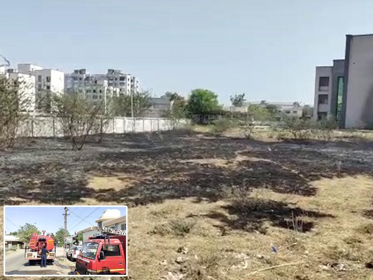 તાલુકા સેવાસદન પાછળ વાયર તૂટી પડતા ખુલ્લા મેદાનમાં આગ ભભૂકી ઉઠી હતી. - Divya Bhaskar