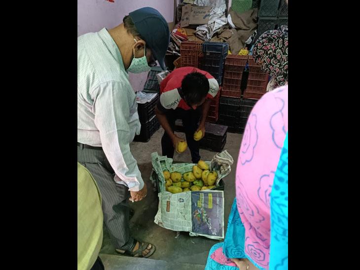 ફૂડ વિભાગ દ્વારા અખાદ્ય ફળનો નાશ કરાયો હતો. - Divya Bhaskar