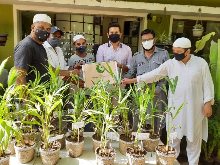 સંસ્થા દ્વારા ઈદની ઉજવણી મુસ્લિમ બિરાદરોને વૃક્ષોના છોડ આપીને કરવામાં આવી હતી. - Divya Bhaskar