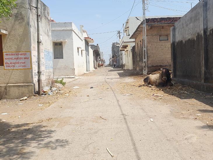 જેતપુરના વાડાસડા ગામમાં એક મહિના પહેલાં 350 કેસ હતા, અત્યારે કોરોનામુક્ત|જેતપુર,Jetpur - Divya Bhaskar