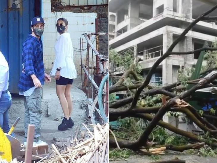 આલિયા-રણબીરના ઘરને ભારે નુકસાન, મલાઈકા-એકતા કપૂરના ઘરની બહાર વૃક્ષો ધરાશાયી|બોલિવૂડ,Bollywood - Divya Bhaskar