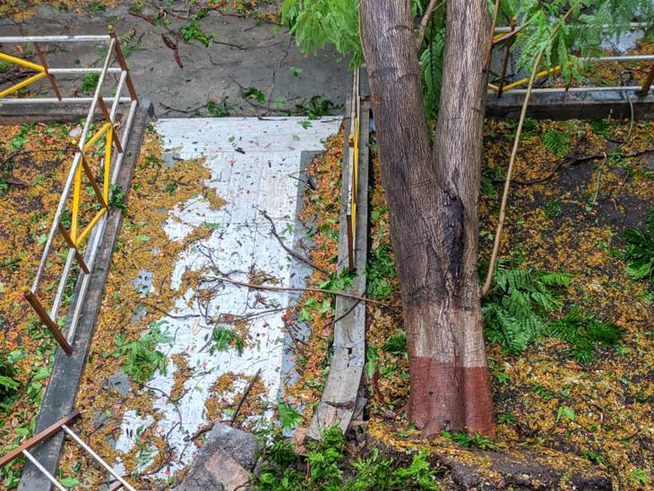 જેતપુરમાં ભારે પવન સાથે પોણા બે ઇંચ વરસાદ વરસતા વીજપુરવઠો ખોરવાયો|જેતપુર,Jetpur - Divya Bhaskar