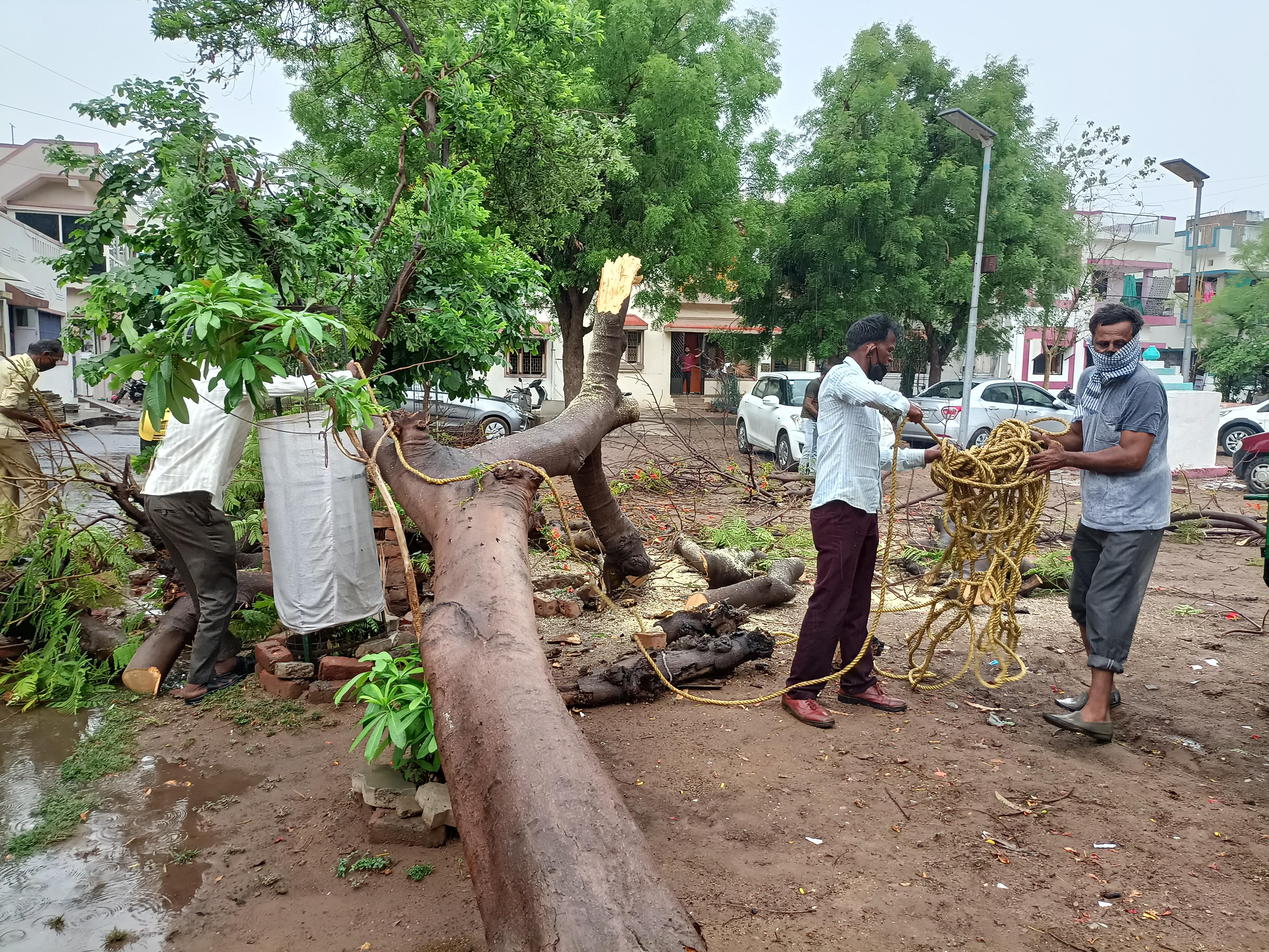 ગાંધીનગર જિલ્લામાં છેલ્લા ચોવીસ કલાકમાં 263 મી.મી કમોસમી વરસાદ, સૌથી વધુ દહેગામમાં 92 મી.મી વરસાદ ગાંધીનગર,Gandhinagar - Divya Bhaskar