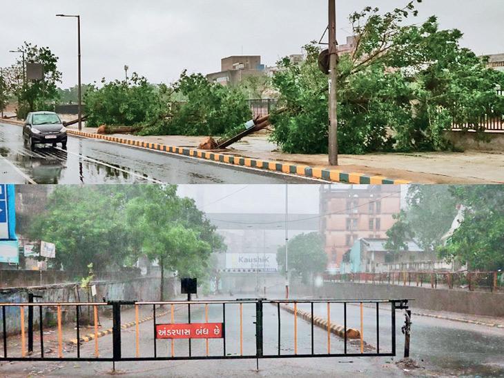 તોફાની પવનથી રિવરફ્રન્ટ પર 50 સહિત 500 વૃક્ષ ધરાશાયી, પાલડીમાં દુકાનનું ધાબું તૂટી પડતાં એકનું મોત|અમદાવાદ,Ahmedabad - Divya Bhaskar