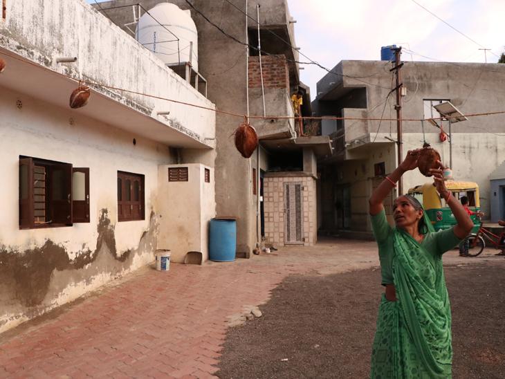 રાજકોટના પારડી ગામમાં કોરોના મહામારીથી બચવા શેરી અને ગલીમાં નાળિયેરના તોરણ બાંધ્યા, વેક્સિન પણ ન મુકાવી|રાજકોટ,Rajkot - Divya Bhaskar