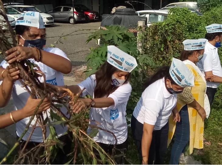 સુરતના પુણા વિસ્તારમાં તંત્ર દ્વારા ખાડીની સફાઈ ન થતા AAPના નગરસેવકો અને કાર્યકર્તાઓ ઝાડુ સાથે સફાઈ કરવા ઉતર્યા સુરત,Surat - Divya Bhaskar