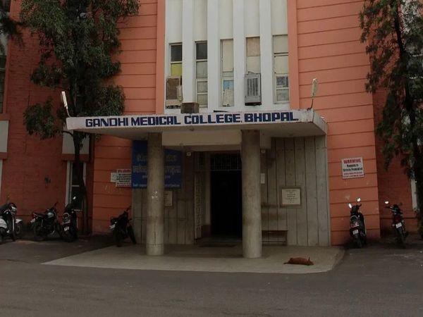 ગાંધી મેડિકલ કોલેજ સ્ટાફ નર્સની 378 જગ્યા પર ભરતી કરશે, B.Sc નર્સિંગની ડિગ્રી ધરાવતા કેન્ડિડેટ્સ 16 જૂન સુધીમાં અપ્લાય કરો|યુટિલિટી,Utility - Divya Bhaskar