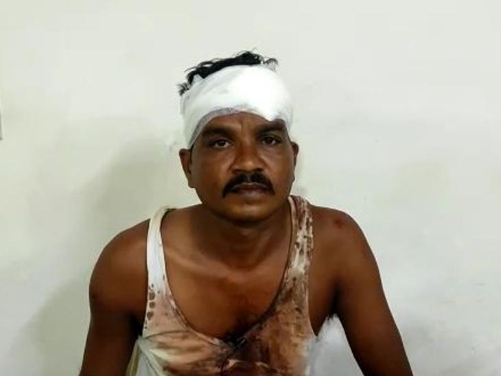 પાવીજેતપુરમાં તંબોલીયા ગામે જૂની અદાવતે એક પરિવાર પર 7નો હુમલો|વડોદરા,Vadodara - Divya Bhaskar