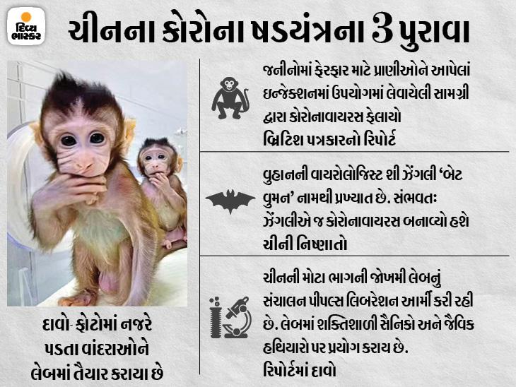 બ્રિટિશ પત્રકારે કહ્યું- વુહાન લેબમાં વાંદરા અને સસલાં સહિત 1 હજાર પ્રાણીઓના જનીનો બદલવામાં આવ્યા; પ્રાણીઓને વાયરસનાં ઇન્જેક્શન પણ લગાવાયાં હતાં વર્લ્ડ,International - Divya Bhaskar