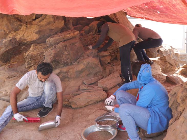 ધોળાવીરા ખાતે 16 કરોડ વર્ષ જૂના ગણાતા Jurassic Fossil Woodને રિસ્ટોર કરવાની કામગીરી પૂર્ણતાના આરે ભુજ,Bhuj - Divya Bhaskar