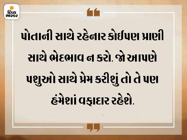 માત્ર મનુષ્યો સાથે જ નહીં, પશુઓ સાથે પણ પ્રેમનો સંબંધ રાખો|ધર્મ,Dharm - Divya Bhaskar