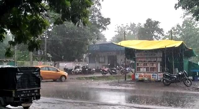 વલસાડ જિલ્લાના અંતરિયાળ વિસ્તારમાં જામ્યો વરસાદી માહોલ, કપરાડામાં ધોધમાર વરસાદ|વલસાડ,Valsad - Divya Bhaskar