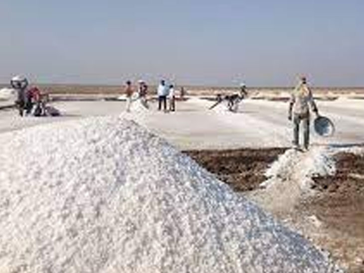 સરકારે 3000ની સહાય કરી પણ સરવે નંબર '0'ને કારણે રણના 8500 અગરિયાને શૂન્ય જ મળશે|પાટડી,Patdi - Divya Bhaskar