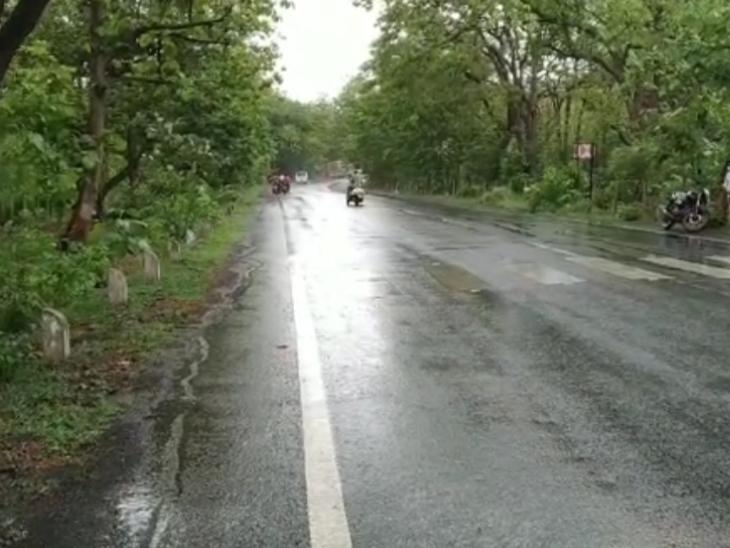 નર્મદા જિલ્લાના ડેડિયાપાડા તાલુકા મથકે અને ગામડાઓમાં વરસાદ વરસતાં ખેડૂતોમાં ખુશીનો માહોલ જોવા મળ્યો હતો. - Divya Bhaskar