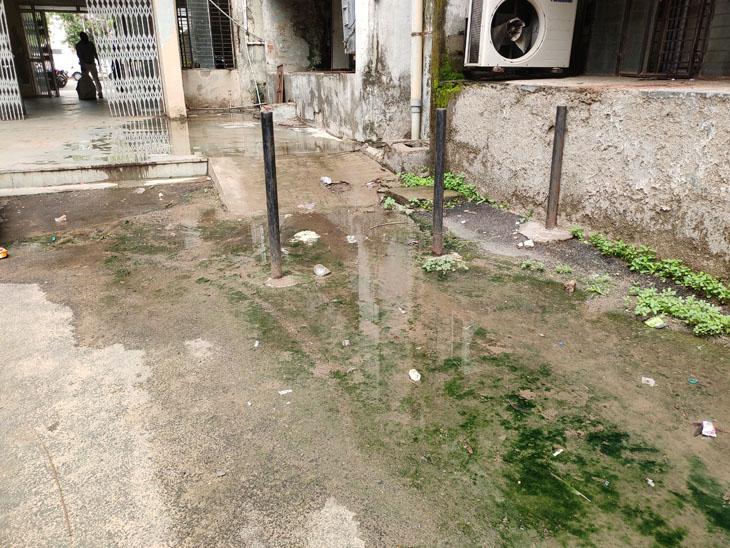 શહેરને સ્વચ્છ રાખતા કોર્પોરેશન બિલ્ડિંગમાં કેટલાક સ્થળે પાણી રહે છે અને ગંદકીના દ્રશ્યો જોવા મળે છે. - Divya Bhaskar