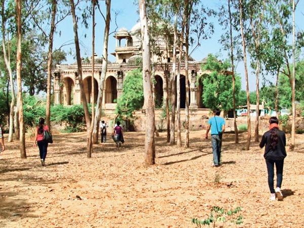 સોજાલીની રોઝ-રોઝી દરગાહ ઐતિહાસિક સ્થળ. - Divya Bhaskar