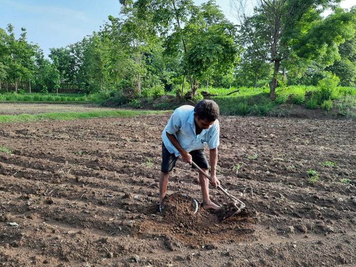 ખેડૂત પિતાએ દીકરીના ઉચ્ચ અભ્યાસ માટે જમીન ગીરવે મુકી અન્યને ત્યાં મજૂરી કરી|મહુવા,Mahuva - Divya Bhaskar
