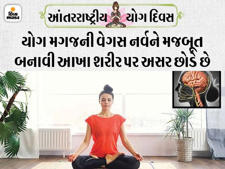 શ્વાસ લેવાની અને છોડવાની રીત મગજ પર અસર કરે છે; ડિપ્રેશન અને હૃદય રોગમાં ફાયદો થાય છે, જાણો યોગ તમારાં સ્વાસ્થ્ય પર કેવી રીતે અસર કરે છે હેલ્થ,Health - Divya Bhaskar