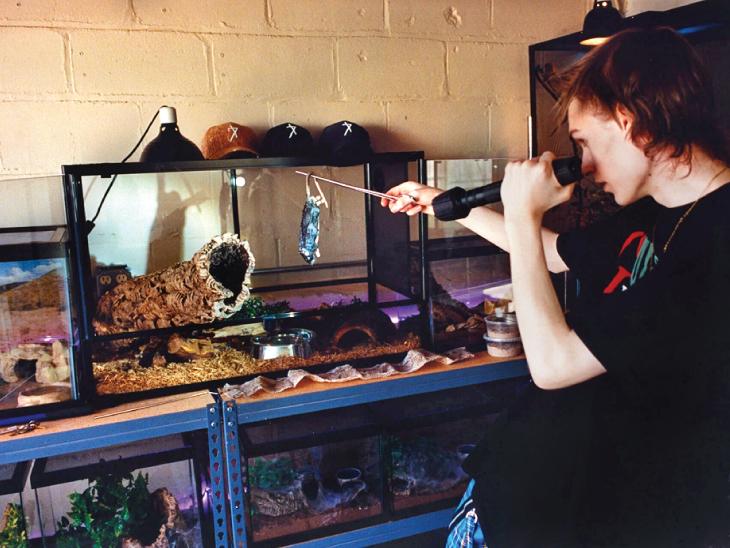અમેરિકા, બ્રિટનમાં ખતરનાક પ્રાણીઓને પાળવાનો ટ્રેન્ડ વધ્યો, તેમની સાથે વીડિયો બનાવી કમાણી કરી રહ્યા છે, જીવને પણ જોખમ|વર્લ્ડ,International - Divya Bhaskar