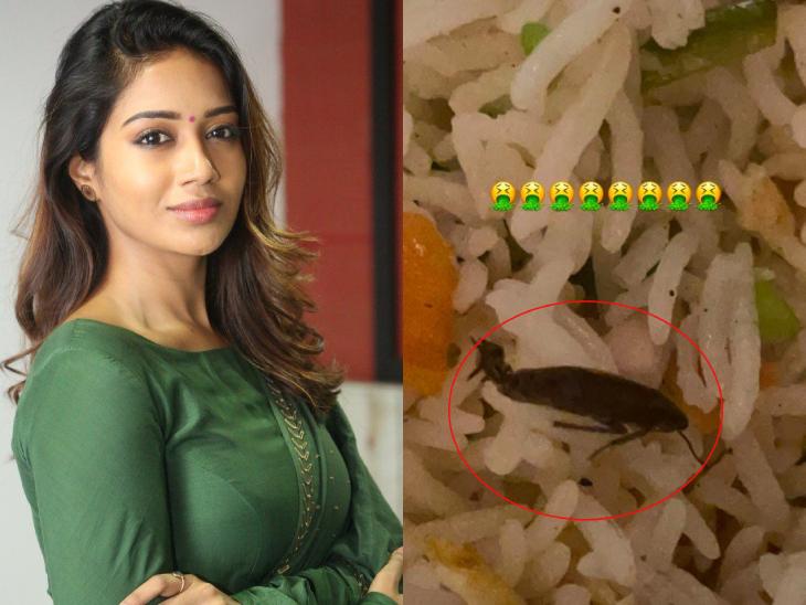 જાણીતી તમિળ એક્ટ્રેસ નિવેથાના ભોજનમાંથી વંદો નીકળ્યો, સ્વિગીને ફરિયાદ કરી|બોલિવૂડ,Bollywood - Divya Bhaskar