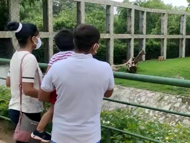 પહેલા દિવસે જ મોટી સંખ્યામાં સહેલાણીઓ પ્રાણી સંગ્રહાલયની મુલાકાતે પહોંચ્યા