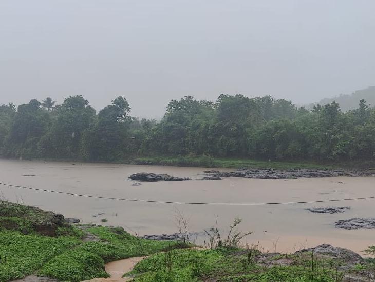 ડાંગના વઘઈમાં 24 કલાકમાં સૌથી વધુ 79 મિ.મી. વરસાદ વરસ્યો આહવા,Ahwa - Divya Bhaskar