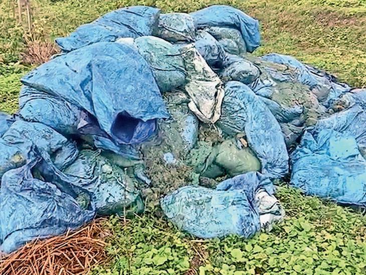 ઉમરવાડાની સીમમાં કેનાલ નજીક ઠલવાયેલો કેમિકલ બેગનો જથ્થો. - Divya Bhaskar