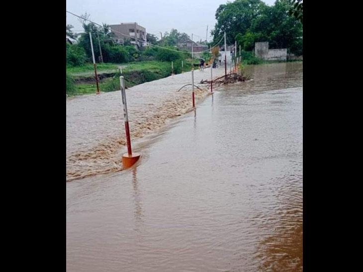 ઉમરાળામાં એક ઇંચ, ઘોઘા અને પાલિતાણામાં પોણો ઇંચ વરસાદ ભાવનગર,Bhavnagar - Divya Bhaskar