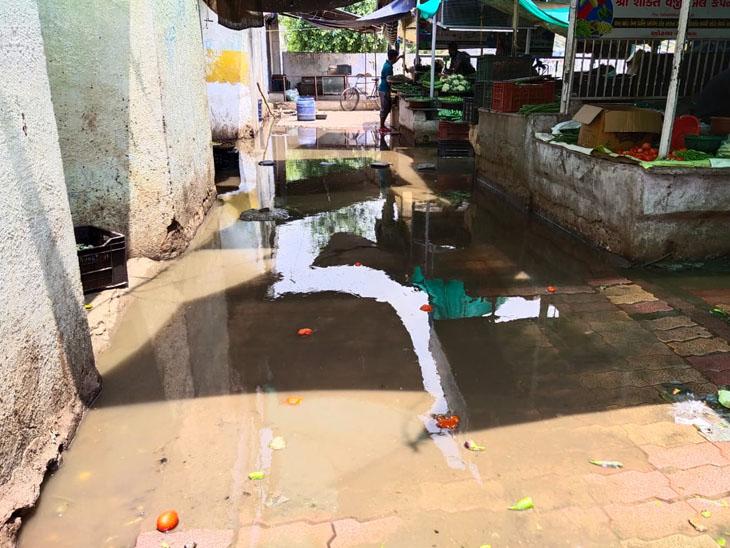 નગરના હાર્દસમા સેક્ટર-21 શાકમાર્કેટમાં ઉભરાતી ગટર અને બંધ શૌચાલયથી વેપારીઓ ત્રાહિમામ, નાના-મોટા વેપારીઓ અને દુકાનો સહિત અંદાજે 400 વેપારીઓ છે. - Divya Bhaskar