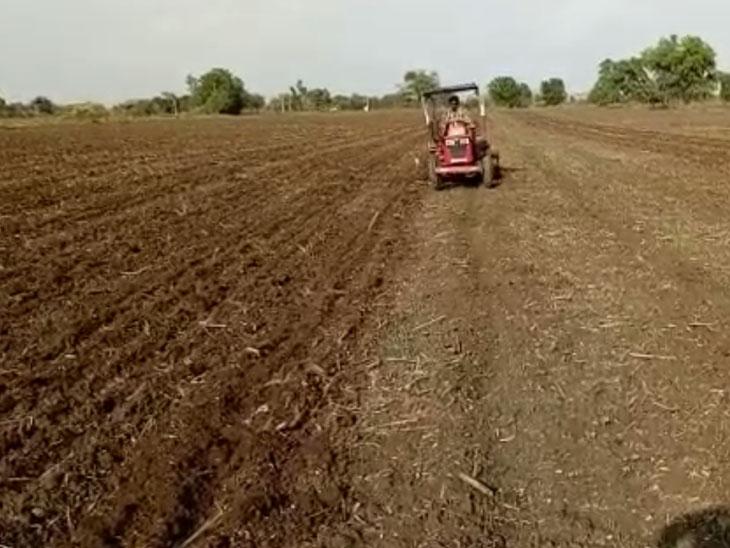 વાવણી લાયક વરસાદ થતા ખેડુતો ખેતીકામમાં પરોવાયા. - Divya Bhaskar