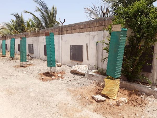 વૃજ ભૂમિ પાર્કમાં સ્થાનિક લોકો દ્વારા 40 વૃક્ષોનું રોપણ કર્યું હતું. - Divya Bhaskar