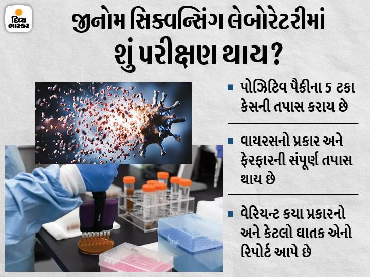 સુરતમાં કોરોનાના વેરિયન્ટની તપાસ માટે જીનોમ સિક્વન્સિંગ લેબોરેટરી શરૂ કરાશે, ઘર આંગણે જ રિપોર્ટ મળશે|સુરત,Surat - Divya Bhaskar