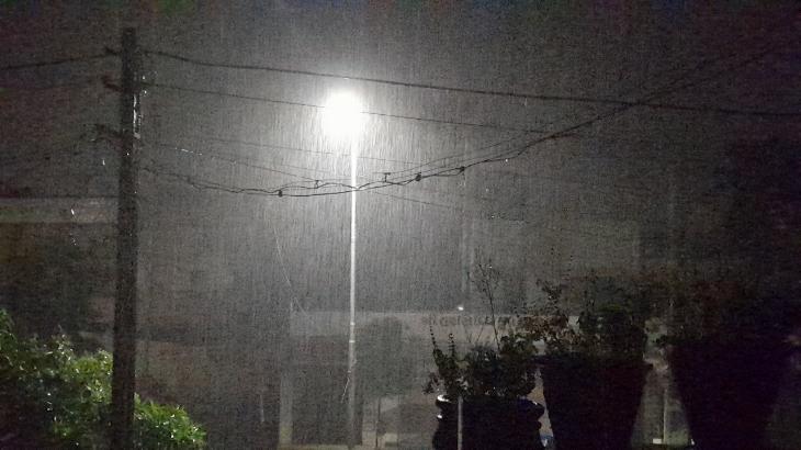 ભાવનગર શહેરમાં મોડી રાત્રે ગાજવીજ સાથે ધોધમાર વરસાદ તૂટી પડ્યો|ભાવનગર,Bhavnagar - Divya Bhaskar