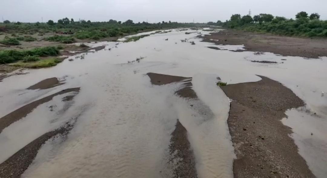 અમરેલી જિલ્લામાં રાત્રીના અઢી ઇંચ જેટલો વરસાદ પડ્યો, શેત્રુંજી નદીમાં નવા નીર આવ્યા, અનેક ખેતરો પાણીથી ભરાયા|અમરેલી,Amreli - Divya Bhaskar