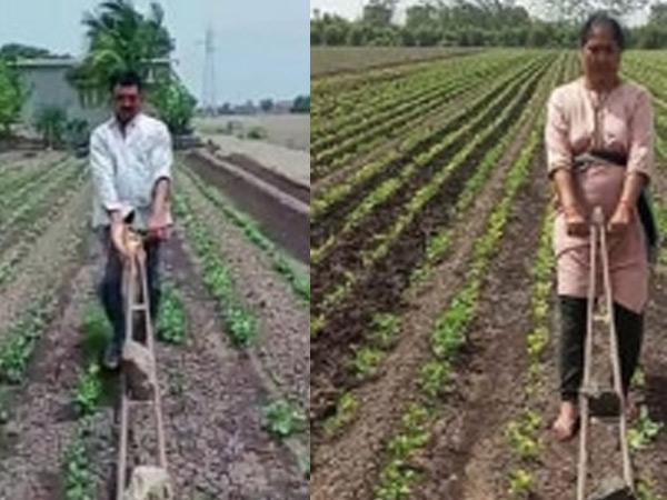 ધોરાજીના ખેડૂત દંપતીએ વાડીમાં જાતે સાતી ચલાવીને ખેતી કરી ધોરાજી,Dhoraji - Divya Bhaskar